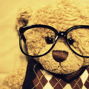 Teddy_bear_cute_lifestyle_teddy_awww_nerdy-dda70e3fff5086d962e39d5b7676cd27_h_large_large