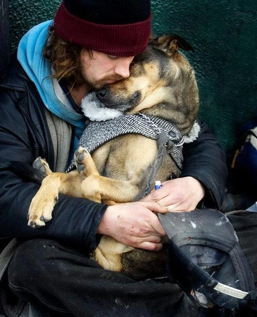 love hug dog