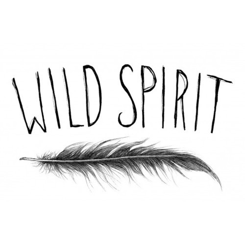 Feather-kandee-kandeedrawings-spirit-wild-favim.com-324871_large