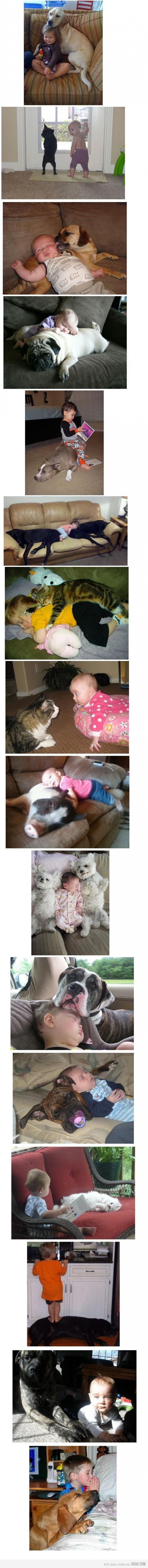 3169871 700b large 9GAG   Why does kids need an animal?!