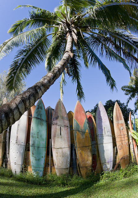 surfboards-fence-hawaii | Flickr - Photo Sharing!