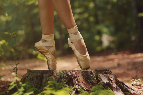 Ballet-nature-plants-pointe-stump-favim.com-332088_large