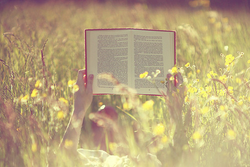 Books_things_book_field_flowers_reading-7dc3be251bb5f07811cbfffbe03ab2e8_h_large