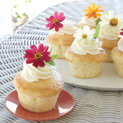 Garden-party-cupcakes-x_large