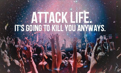 attack, cool, cute, happy, karma - inspiring picture on Favim.com