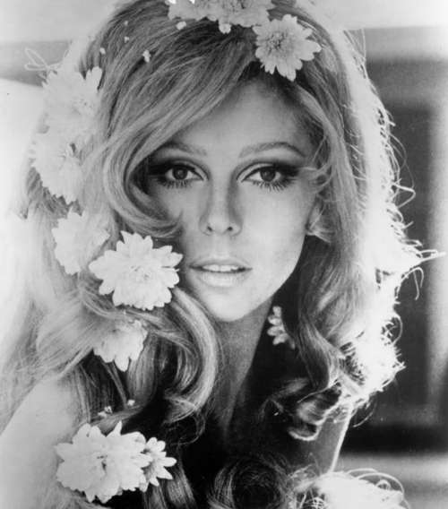 nancy sinatra nude. Nancy-sinatra_large. report this entry Post Share Tweet