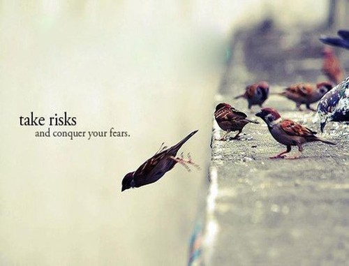 Life_fear_fly_jump_risk_sparrow-3b32ebe08cfbb4558fdd55fbb382697d_h_large