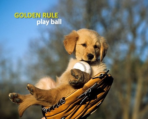 il 570xN.173381441 large Golden Rule Play Ball 8 x 10 Print by MarkJAsher on Etsy