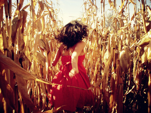 Away-field-girl-red-dress-running-favim.com-161462_large