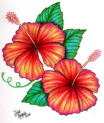 Crazy Tattoo Galleries: Hibiscus Tattoo Flash