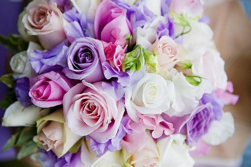 Pink purple and white flowers mightylinksfo