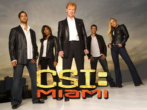 Csi20miami_large