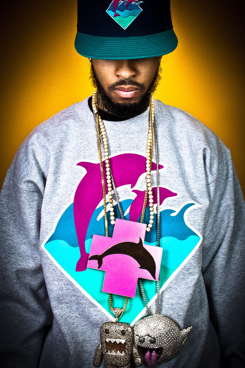 Pinkdolphin3_large
