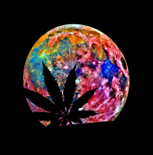 Stoned to the bone :: Weed picture by Peacefulrain09 - Photobucket
