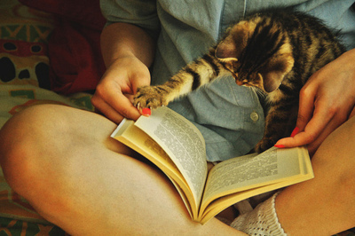 Book-cat-chill-cute-girl-favim.com-361936_large