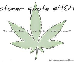 stoner quote
