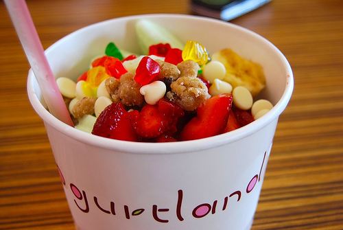 Yogurtland1_large