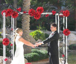wedding. arch. dress