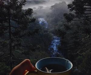 nature