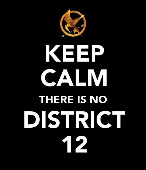 Keep-calm-the-hunger-games-24963321-500-583_large