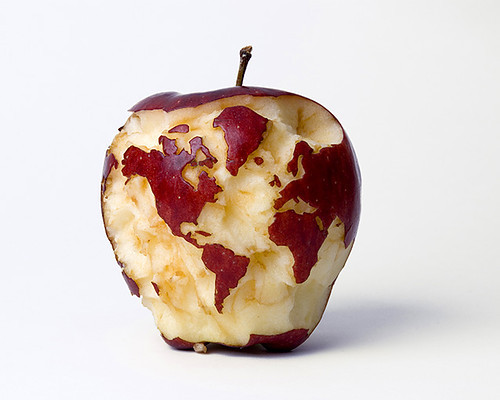Visual_drama_world_apple_carved_map_creative-8dbce13dd01e1efdbd69b6346e6b9e2e_h_large