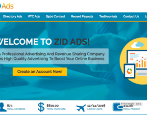zid ads review