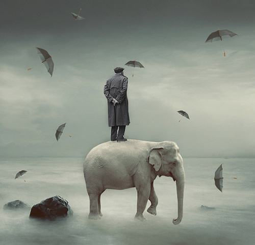 046-surreal-photomanipulations_large