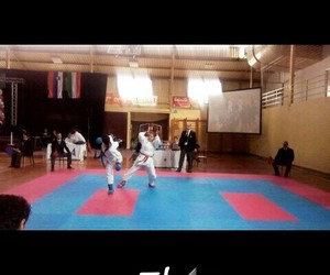 karate punch fighter