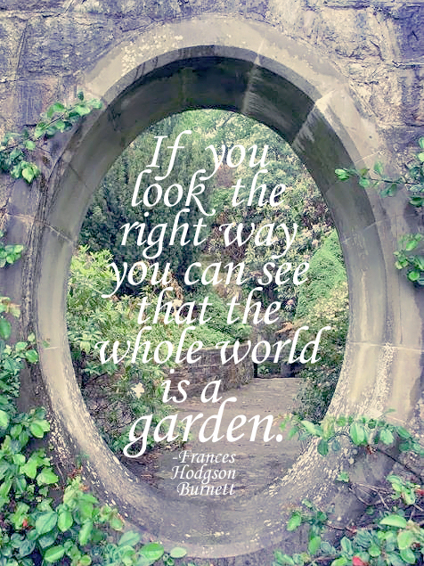 Sunday Quotes Gardens Sunshine And Chaos