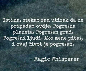 magic whisperer
