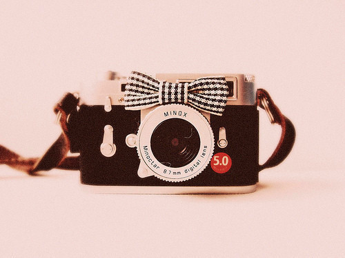 Vintage_20bowknot_20camera_20case-f77114_large