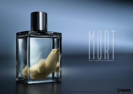 Noah_mort_print_thumb_large