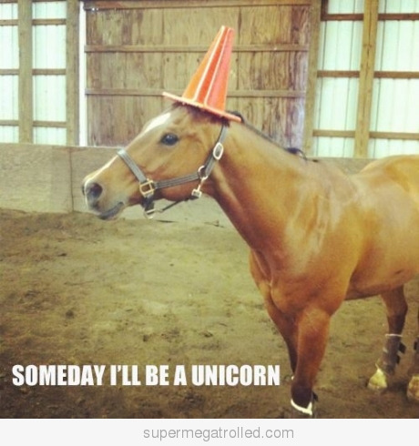 Someday-i039ll-be-a-unicorn_large