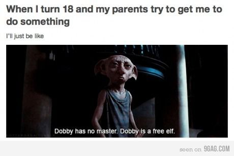dobby, fuck yeah, funny, harry potter, like a boss - inspiring picture on Favim.com