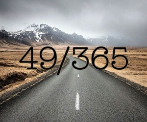 49/365