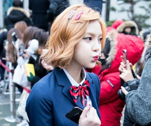 9muses