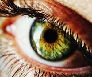 jpminor eyes green
