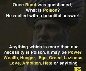 quotes rumi