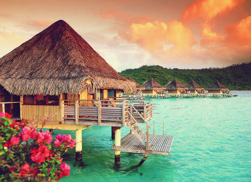 Beach-beatiful-beautiful-bora-bora-green-favim.com-251423_large