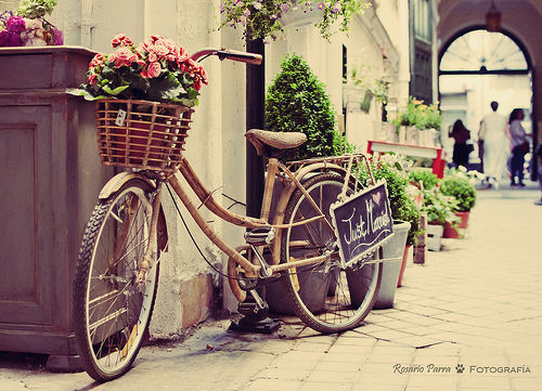 bike, cute, flowers - inspiring picture on Favim.com