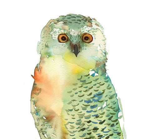 Green Owl art print archival fine art von courtneyoquist auf Etsy