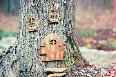 Dear World, You're Pretty! | A squirrel's house. ...