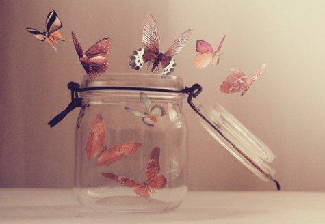 Butterfly-jar-351222-475-328_large