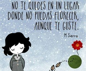 florecer