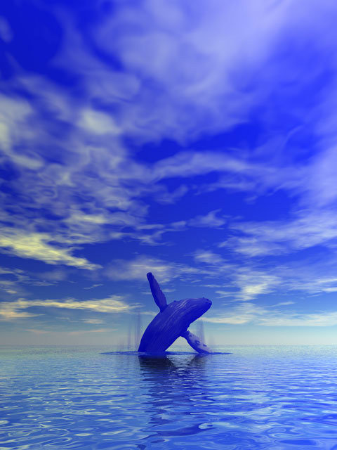 Ig52_beasts_blue_whale_02_large
