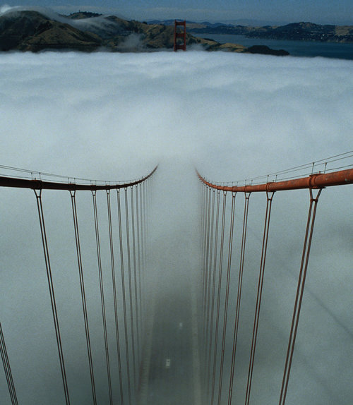 Foggy-bridge-strings-inside-31000_large