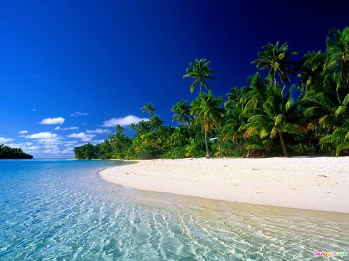 Beautiful_tropical_beach-14711_large