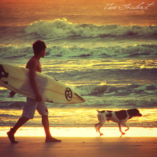surfer and his friend by isacg d51exu4 large Surfer and his Friend by `isacg on deviantART