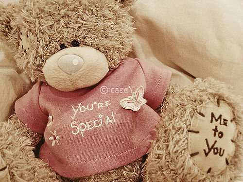 Urso-you-are-especial_large_large