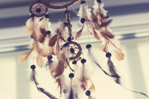 Dreamcatcher_feathers_photography_western-472ada5fe8bacc4a1b8e4e6d07767825_h_large_large
